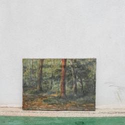 Piccolo Dipinto Paesaggio...