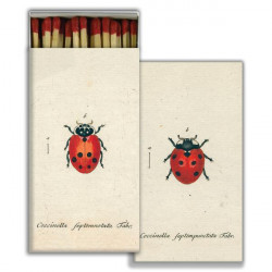 Little Lady Bug & Red Lady...